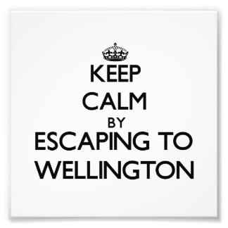 Keep calm by escaping to Wellington Maryland Photo Art