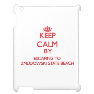 Keep calm by escaping to Zmudowski State Beach Cal iPad Cover