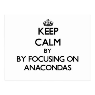 Keep calm by focusing on Anacondas Post Cards