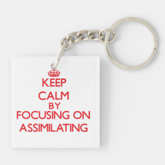 Keep Calm by focusing on Assimilating Square Acrylic Key Chains