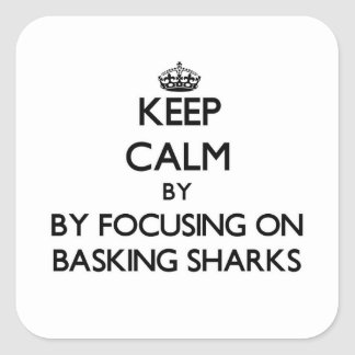 Keep calm by focusing on Basking Sharks Square Sticker