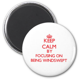 Keep Calm by focusing on Being Windswept Fridge Magnet