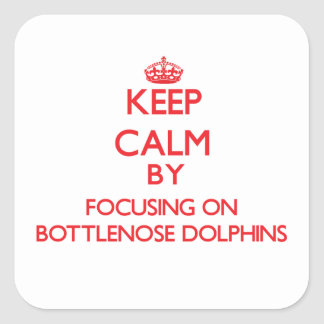 Keep calm by focusing on Bottlenose Dolphins Sticker