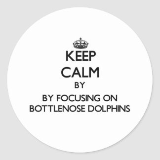 Keep calm by focusing on Bottlenose Dolphins Round Stickers