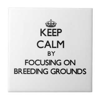 Keep Calm by focusing on Breeding Grounds Ceramic Tile