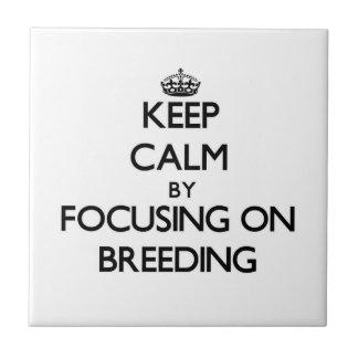 Keep Calm by focusing on Breeding Tiles