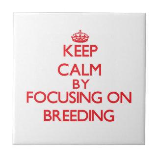 Keep Calm by focusing on Breeding Tile