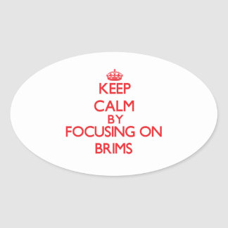 Keep Calm by focusing on Brims Oval Sticker