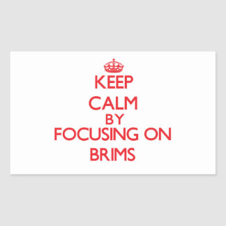 Keep Calm by focusing on Brims Rectangle Stickers