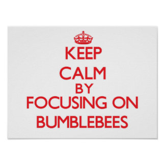 Keep Calm by focusing on Bumblebees Poster