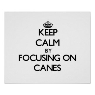 Keep Calm by focusing on Canes Poster