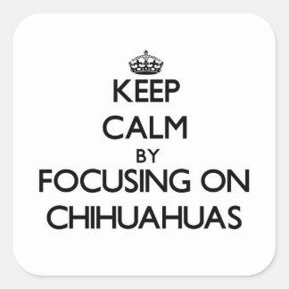 Keep Calm by focusing on Chihuahuas Sticker