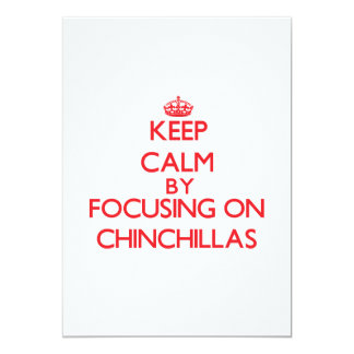 Keep calm by focusing on Chinchillas Announcements