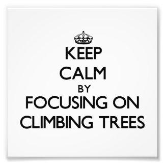 Keep Calm by focusing on Climbing Trees Photo Print