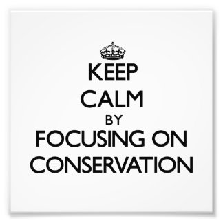 Keep Calm by focusing on Conservation Photo