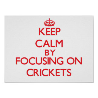 Keep Calm by focusing on Crickets Poster