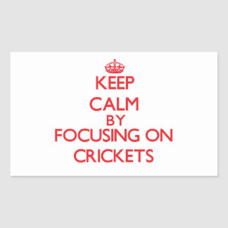Keep Calm by focusing on Crickets Rectangle Sticker