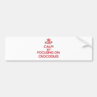 Keep Calm by focusing on Crocodiles Bumper Stickers