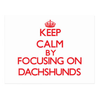 Keep Calm by focusing on Dachshunds Post Card
