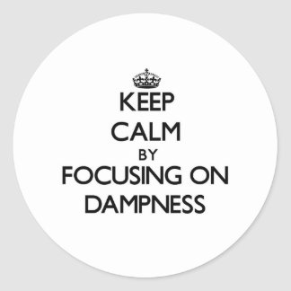 Keep Calm by focusing on Dampness Round Stickers