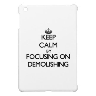 Keep Calm by focusing on Demolishing Cover For The iPad Mini