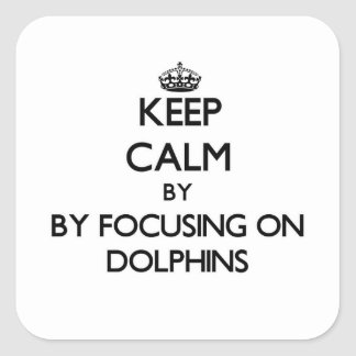 Keep calm by focusing on Dolphins Square Sticker