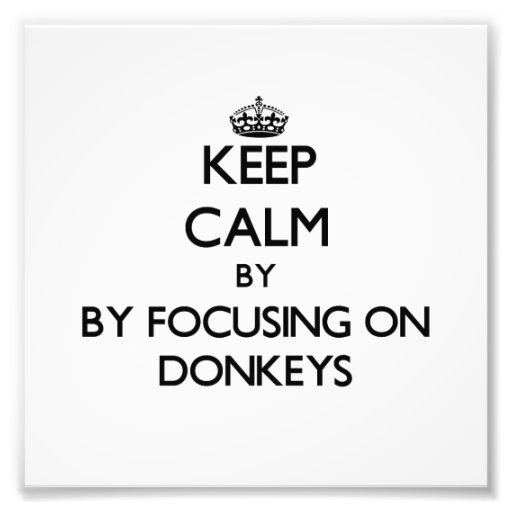 Keep calm by focusing on Donkeys Photographic Print