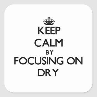 Keep Calm by focusing on Dry Square Stickers