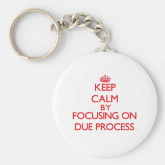 Keep Calm by focusing on Due Process Keychain