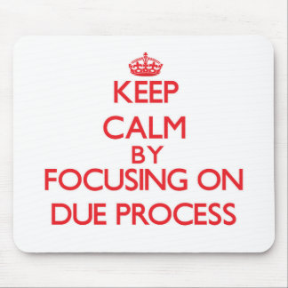 Keep Calm by focusing on Due Process Mousepad