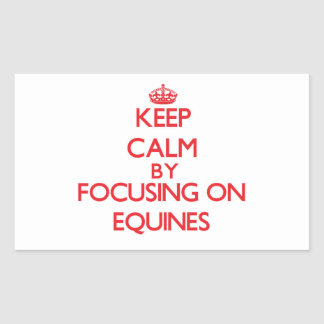 Keep Calm by focusing on EQUINES Rectangle Sticker