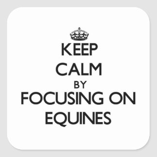 Keep Calm by focusing on EQUINES Square Sticker