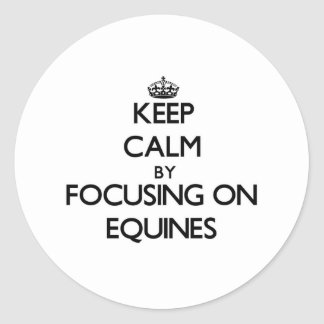 Keep Calm by focusing on EQUINES Round Stickers