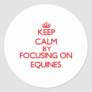 Keep Calm by focusing on EQUINES Sticker