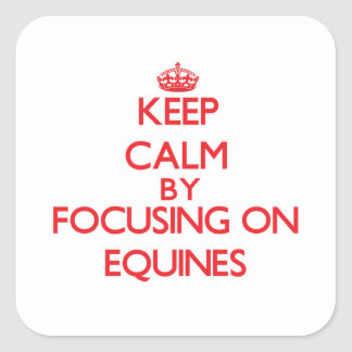 Keep Calm by focusing on EQUINES Stickers