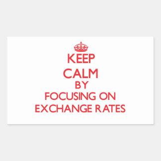 Keep Calm by focusing on EXCHANGE RATES Rectangular Sticker