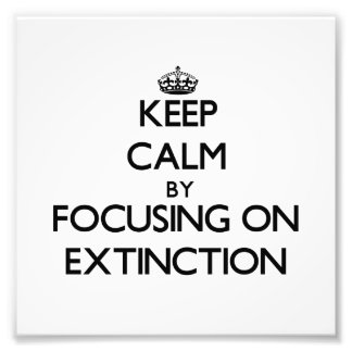 Keep Calm by focusing on EXTINCTION Photograph