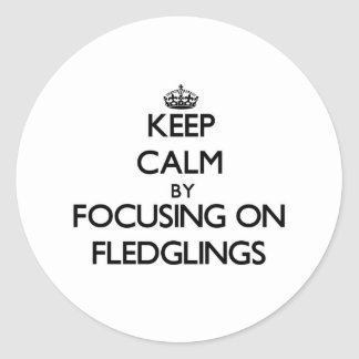 Keep Calm by focusing on Fledglings Round Stickers