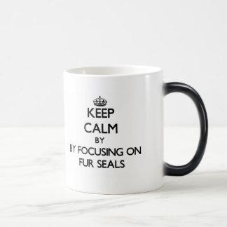 Keep calm by focusing on Fur Seals Morphing Mug