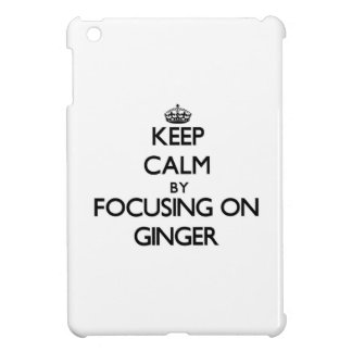 Keep Calm by focusing on Ginger iPad Mini Covers