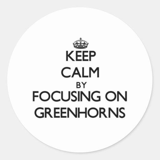 Keep Calm by focusing on Greenhorns Round Sticker