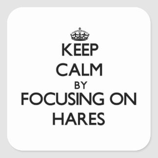 Keep Calm by focusing on Hares Square Sticker