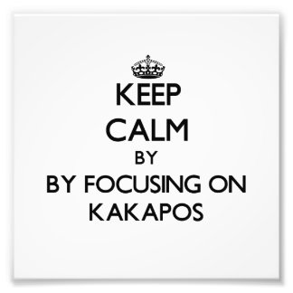 Keep calm by focusing on Kakapos Photograph