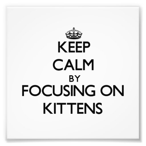 Keep Calm by focusing on Kittens Photographic Print