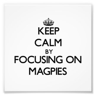 Keep Calm by focusing on Magpies Art Photo