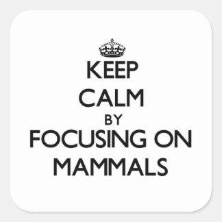 Keep Calm by focusing on Mammals Sticker