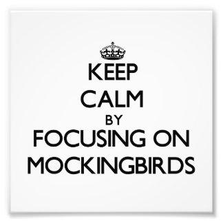 Keep Calm by focusing on Mockingbirds Photograph
