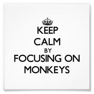 Keep Calm by focusing on Monkeys Photo Print