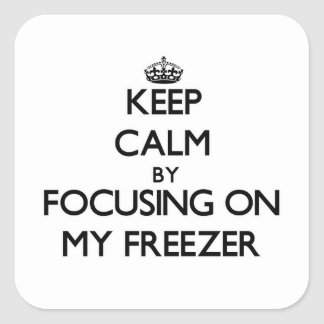 Keep Calm by focusing on My Freezer Square Sticker