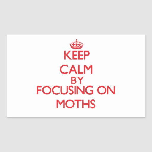 Keep calm by focusing on on Moths Rectangular Stickers